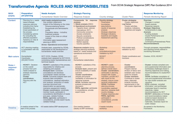 Transformative Agenda - SRP Roles & Responsibilities